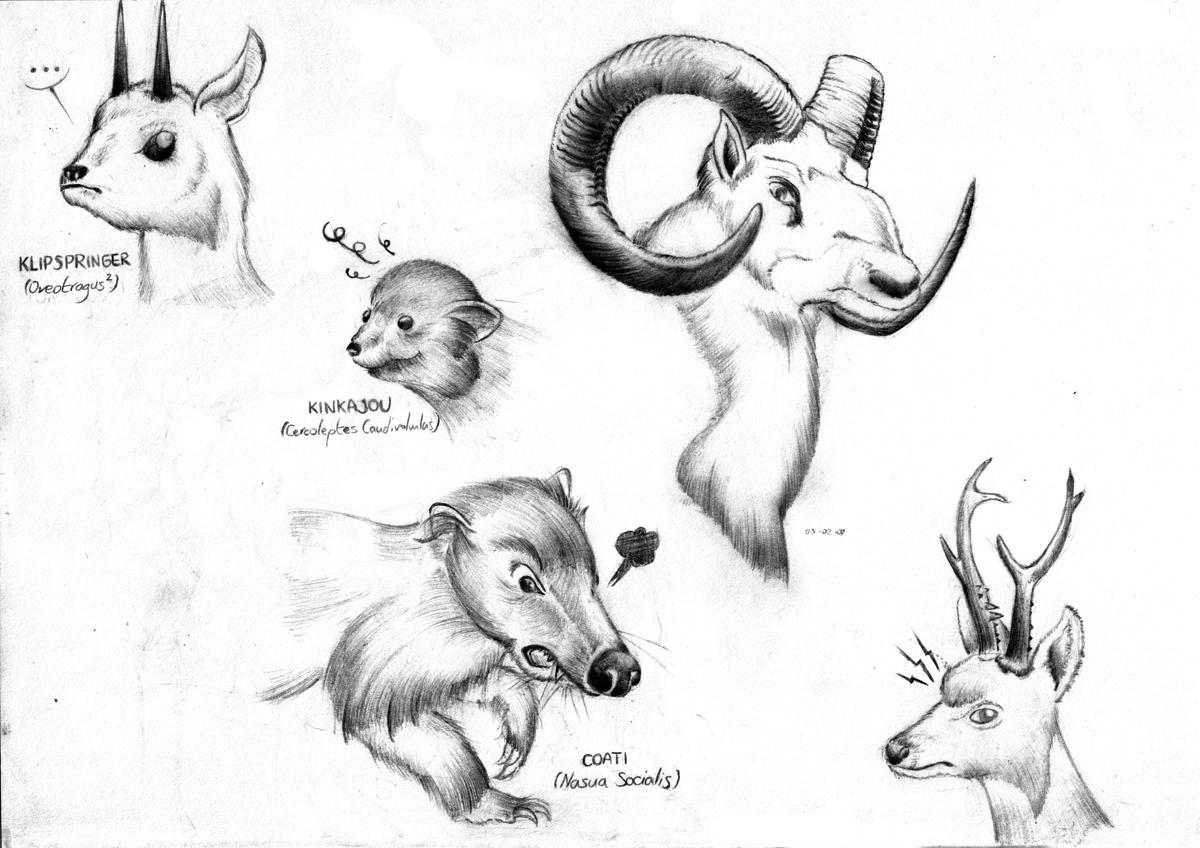 Croquis amineworld - Croquis animaux ...